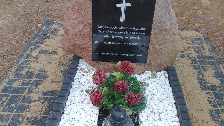 Odnowa leśnego cmentarza w Kolonii Ossie